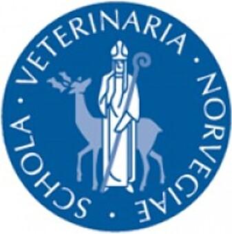 Saken er produsert og finansiert av Norges veterinærhøgskole - Les mer