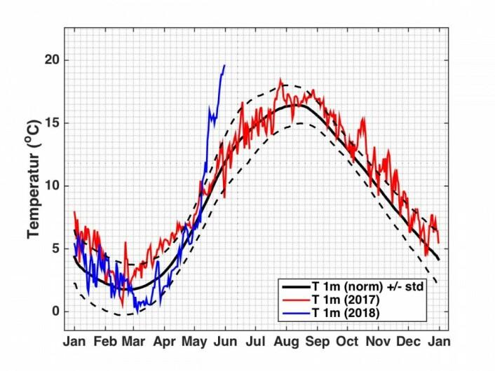 Temperatur målt i Flødevigen, Arendal i 1m dyp. Blå linje viser utviklingen i 2018 sammenlignet med 2017 (rød linje) og langtidsgjennomsnittet (svart linje). Foto: Jon Albretsen, Havforskningsinstituttet