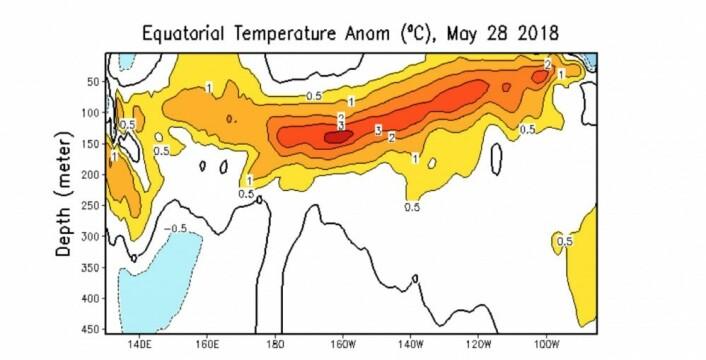 Mye varmt vann under overflaten i Stillehavets ekvatorbelte nå ved månedsskiftet. Er det en plan for å starte en El Ninjo? (Bilde: NOAA)