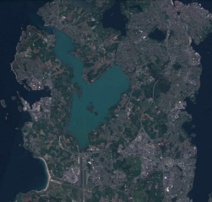 """Det """"blomstrer"""" i Hafrsfjord nå, her sett fra Sentinel-2 lørdag 26 mai. (Bilde: Copernicus Sentinel-2 data 2018)"""