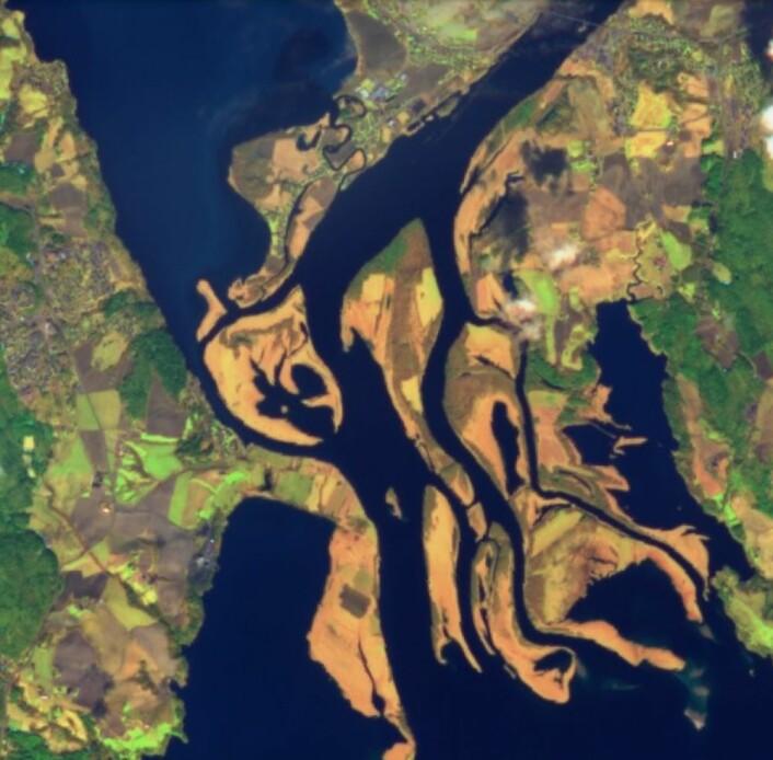 Nordre Øyeren sett fra Sentinel-2 den 30. april i år. (Bilde: Copernicus Sentinel-2 data 2018)