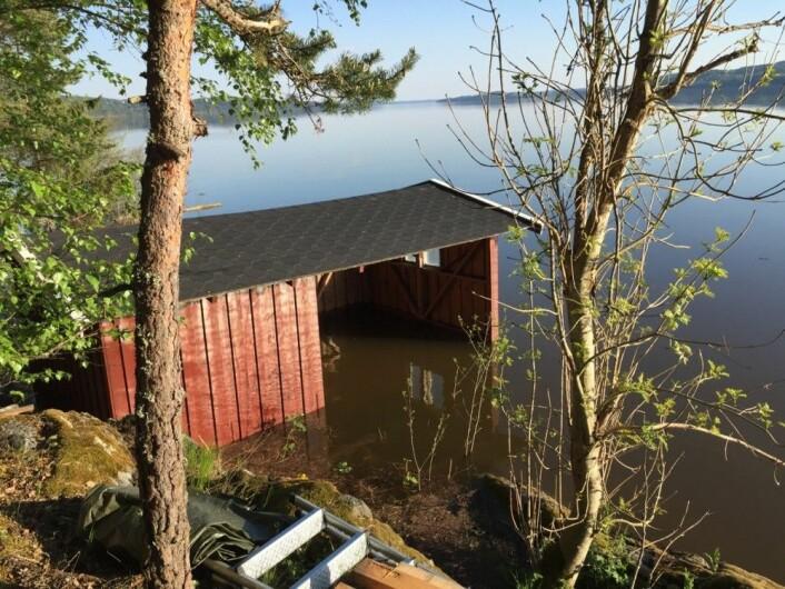 """Flommen 2018 stod """"bare"""" en halvmeter over gulvet i båtnaustet mitt. Og ja - vannet var brunt. (Bilde: T. Wahl)"""