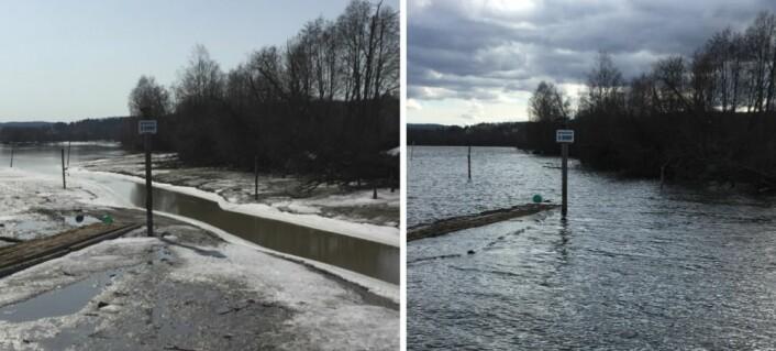 Glomma ved Fetsund 14. april (venstre) og 4. mai (høyre). (Bilder: T. Wahl)