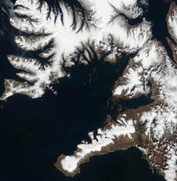Våren kommer på Island, også. Her sett fra NASAs satellitt Terra lørdag 28 april. (Bilde: NASA Terra MODIS)