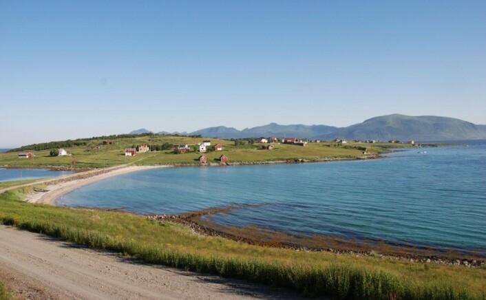 Holdøya, Hadsel kommune. Kystlandskap med aktiv jordbruksdrift. Et eksempel på kombinasjonslandbruk og kulturlandskap i et kystområde (Foto: Elin Rose Myrvoll, NIKU)