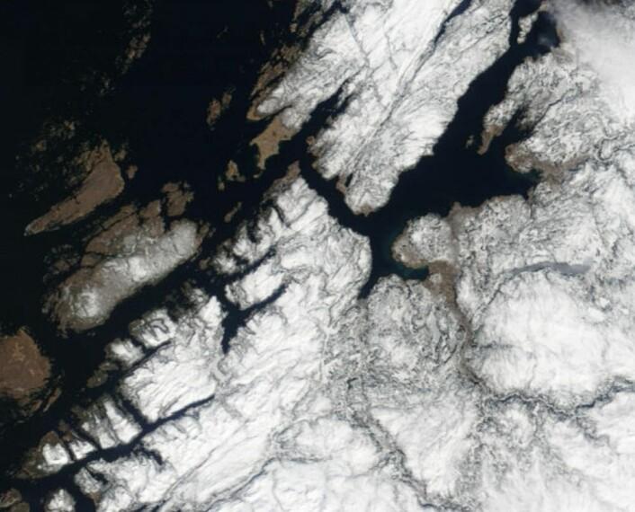Litt barmark å se noen steder i Trøndelag fredag 13. april. (Bilde: NASA Terra MODIS)