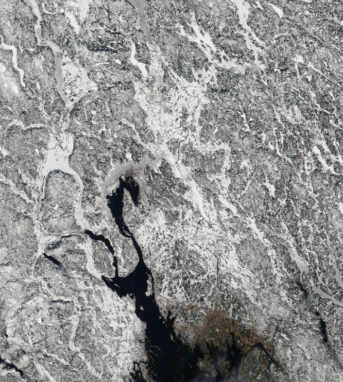 Snøen var allerede forsvunnet lengst sør i Østfold på langfredagen. (Bilde: NASA Terra MODIS)