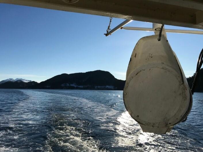 Feltarbeid i Førdefjorden (Foto: Mari S. Myksvoll)