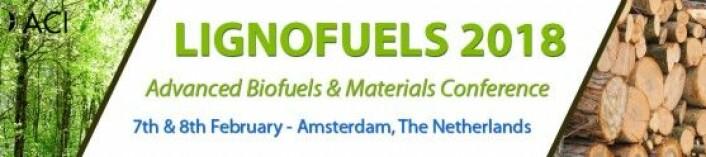 Skogsressurser kan brukes til så mangt. Web-banner for Lignofuelskonferansen, screengrab.
