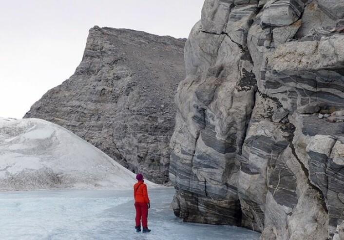 Gode blotninger viser komplekse geologiske hendelser gjennom lang tid. Gneiser i Jutulsessen i nærheten av den norske Antarktis-stasjonen Troll. (Foto: Ane K. Engvik)