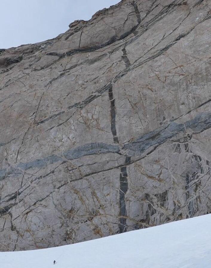 Prikken nederst på snøfonna illustrerer den enorme dimensjonen på fjellveggen. Smelter som størkner langs ganger og lag gir imponerende relasjoner . (Foto: Ane K. Engvik)