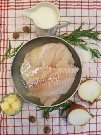 Disse er blant mange gode ingredienser i Stians hjemmelagede fiskekaker - oppskriften finner du under. (Foto: Stian Gjerstad Iversen, Nofima)