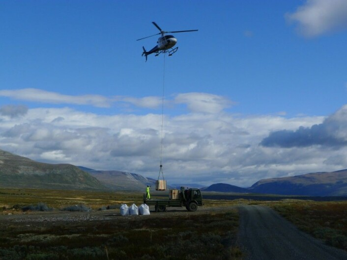 Vierplanter og jord ble løftet ut med helikopter for å få dem raskt fram til plantestedet. (Foto: Dagmar Hagen)