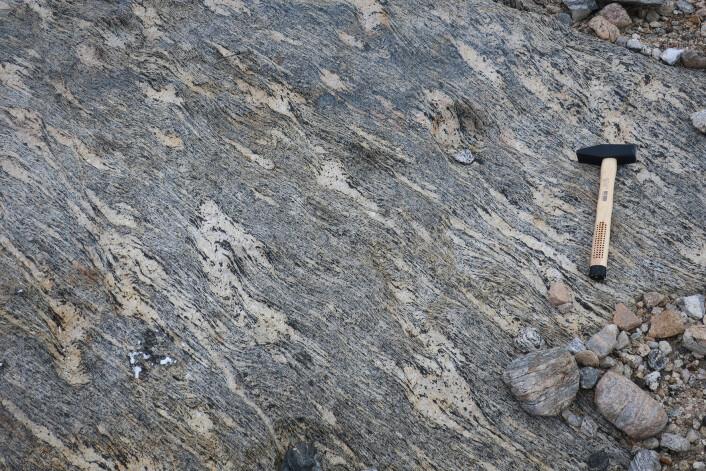 Migmatitt - den oppsmeltede delen av steinen ligger som lyse lommer i berget, mens de mørkere delene viser strukturen i den gamle gneisen. (Foto: Ane K. Engvik)