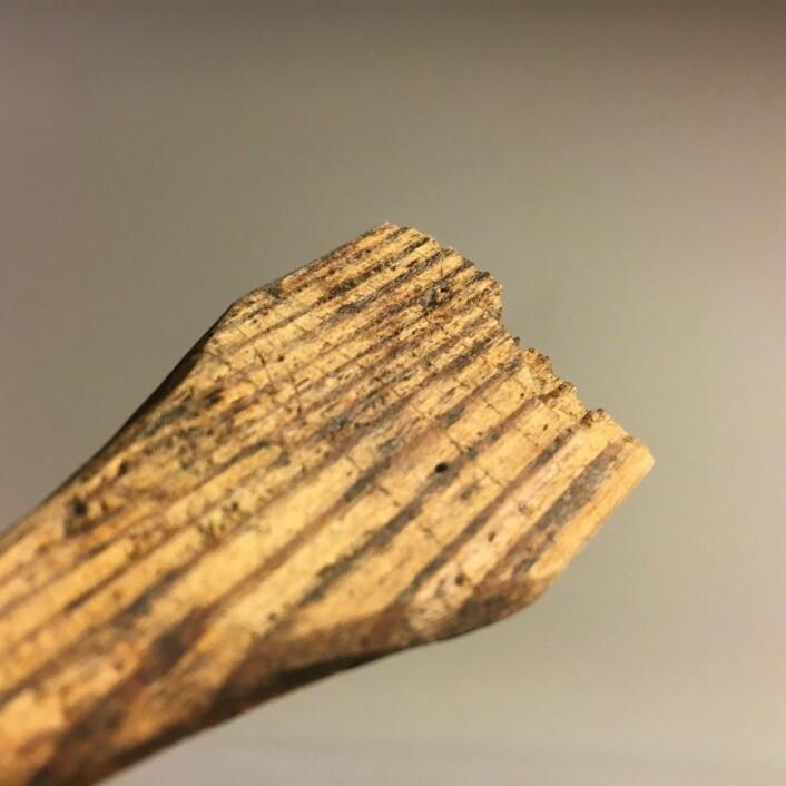Smørkam med runer. (Foto: Sara Langvik Berge, NIKU)