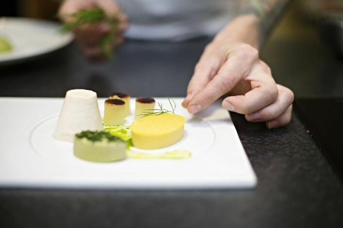Konsistenstilpasset mat må gjenskape produktets former. En siste tilsetting av farge og smak gjør stor forskjell. (Foto: Jon-Are Berg-Jacobsen, Nofima)