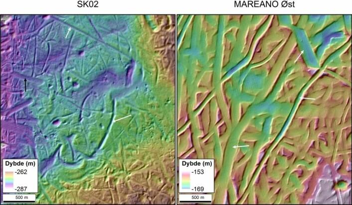 Figur 2. Fra moderne ekkolodd får vi også bunnreflektivitetsdata som forteller oss om havbunnen er dekket av grove eller fine sedimenter. En grov bunntype med blokk, stein og grus vil reflektere mye av signalet fra ekkoloddet og gi høy bunnreflektivitet (vist med gul og oransje farge på figur 3). Der havbunnen er jevn og dekket av sand eller slam vil det derimot bli lavere reflektivitet (rosa og lilla områder på figur 3). Illustrasjon: MAREANO