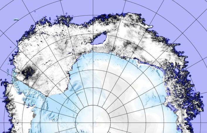 Et mer detaljert sjøiskart for Antarktis 9 november, også dette produsert med passiv mikrobølgeradiometri. (Bilde: AMSR2/PolarView-Univ Bremen)