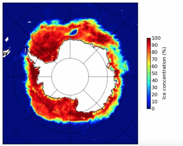 Grovkornet sjøiskart fra Antarktis 9 november. (Bilde: EUMETSAT osisaf.met.no)