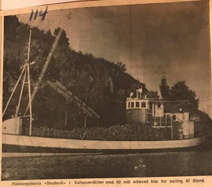 """Skudevik"" med 60 favner eikeved til fabrikker på Stord. Bildet er en faksimile fra Fædrelandsvennen 03.07.1965 Fædrelandsvennen"