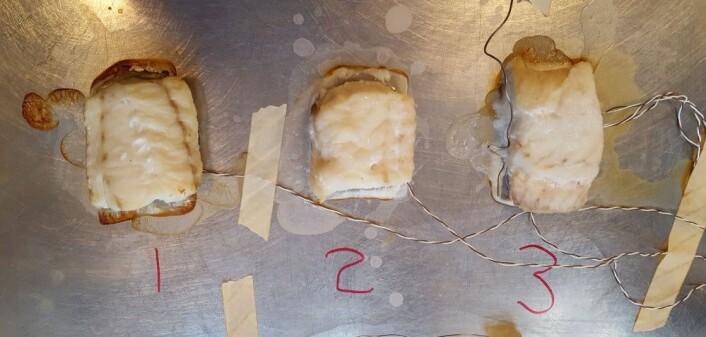 Her er et bilde fra forsøk med ovnsbaking av torsk. Vi kan tydelig se hvordan den har krympet. (Foto: Dagbjørn Skipnes, Nofima)