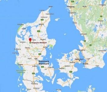 Reinstasjonen ble etablert ved byen Fredriks på Alheden i Midt-Jylland hvor Kongenshus Mindepark ligger. (Kart: Skjermdump Google maps)