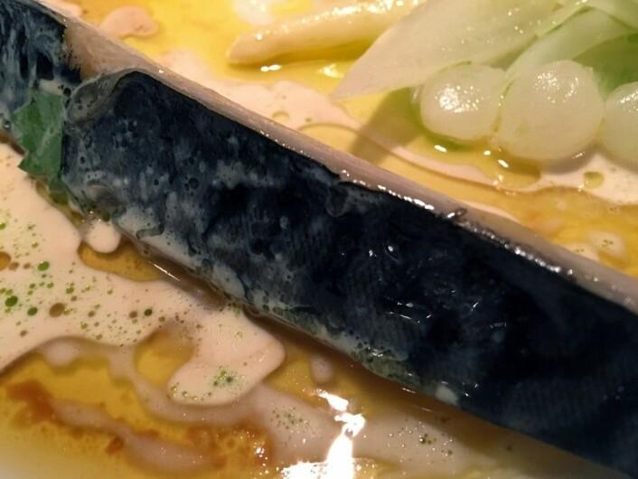 Her er en av rettene vi ble servert under middagen på en fagkonferanse om makrell. Makrellretten var norsk-inspirert og laget av mesterkokken Gunnar Hvarnes. (Foto: Kine Mari Karlsen)