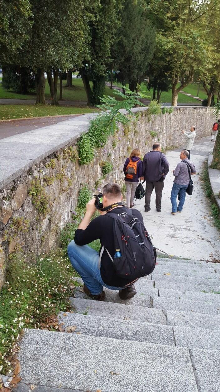 Også i byen sto plantene i fokus. Foto: HAU