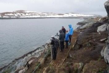 Norsk reiseliv er i kraftig vekst og naturen, som her fra Hornøya, er en viktig attraksjon. (Foto: Øystein Aas)