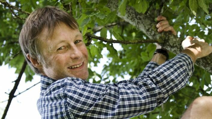 I kunnskapens tre: Nyvalgt NIH-rektor Lars Tore Ronglan. Foto: NIH