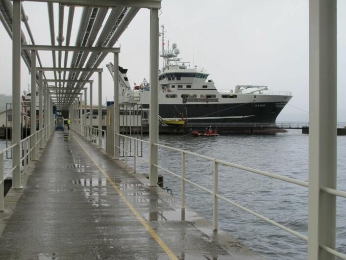Forskningsskipet G.O. Sars får påfyll etter 17 dager til sjøs, og er straks klar for nytt oppdrag i Barentshavet. Foto: Mareano