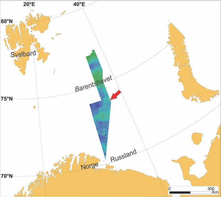 Oversiktsbildet over viser hvor vi kan se godt bevarte elvekanaler på havbunnen (rød pil), midt i Barentshavet ved grensa til Russland. Foto: Mareano