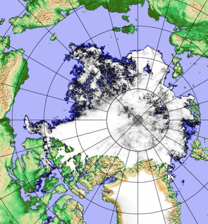 Sjøisen i Arktis, observert med det japanske passive mikrobølgeinstrumentet AMSR2 fredag 1. september. (Bilde: PolarView/Univ Bremen)