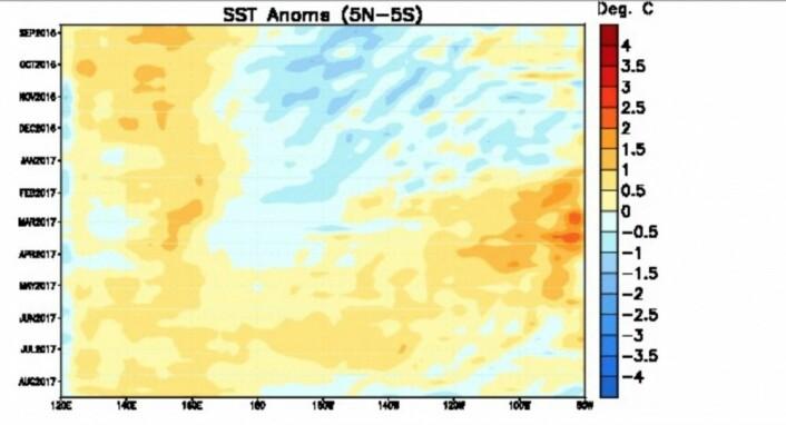 Overflatetemperatur-anomaliet i ekvatorbeltet i Stillehavet, plottet i både rom og tid. (Bilde: NOAA)