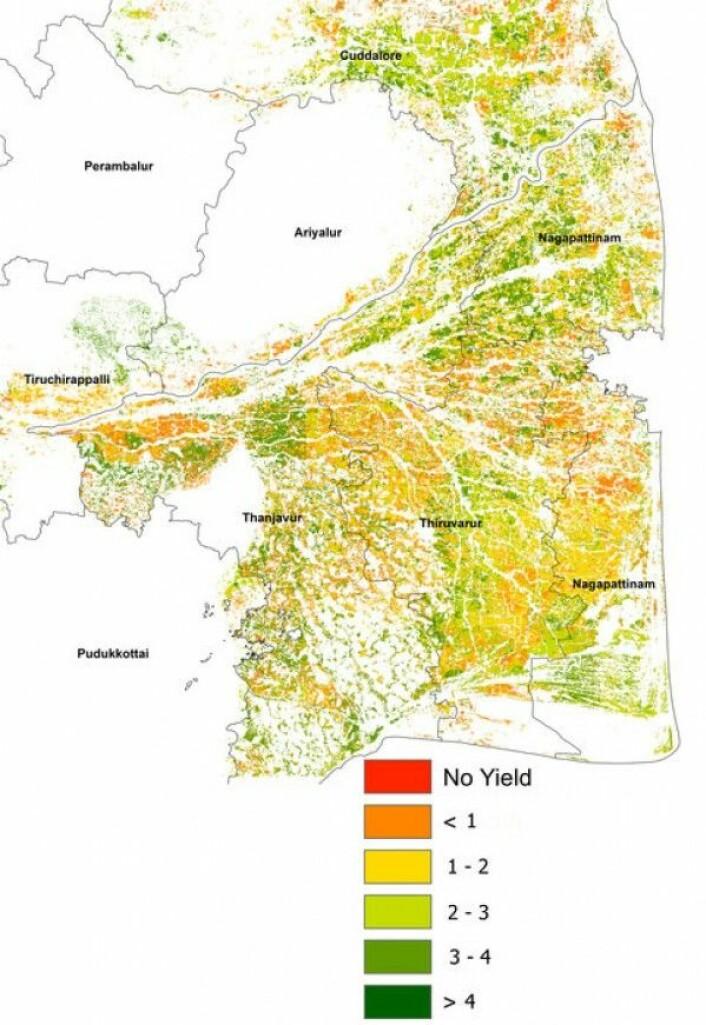 Risavlinger i Sør-India sett av radarsatellittene Sentinel-1. Rødere farge viser dårligere avling. Sentinel/Copernicus/RIICE/TNAU