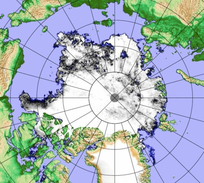 Sjøisen i Arktis 19. august. Årets minimum er nok ikke langt unna nå. (Bilde: PolarView/Univ Bremen)