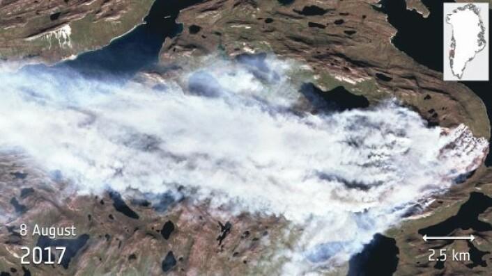 Brann i torvmyr på Grønland sett av miljøsatellitten Sentinel-2A i flere bølgelengder. For å se gif-animasjonen, klikk på bildet. ESA