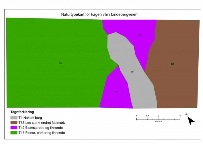 Naturtypekart for hagen vår. Der det i dag er plen (grønt), vil jeg ha blomstereng. Kartlagt 28. juli 2017 av Heidrun A. Ullerud.