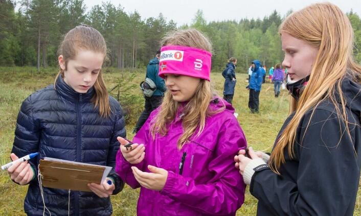 Elevene førte resultatet av tellingene inn på et eget skjema. (Foto: Børre K. Dervo ©)