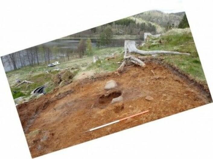 En spennende plassering av graven i skråning, slik at den døde fikk utsikt over vannet og bygda. Foto: Camilla Cecilie Wenn, Kulturhistorisk museum UiO