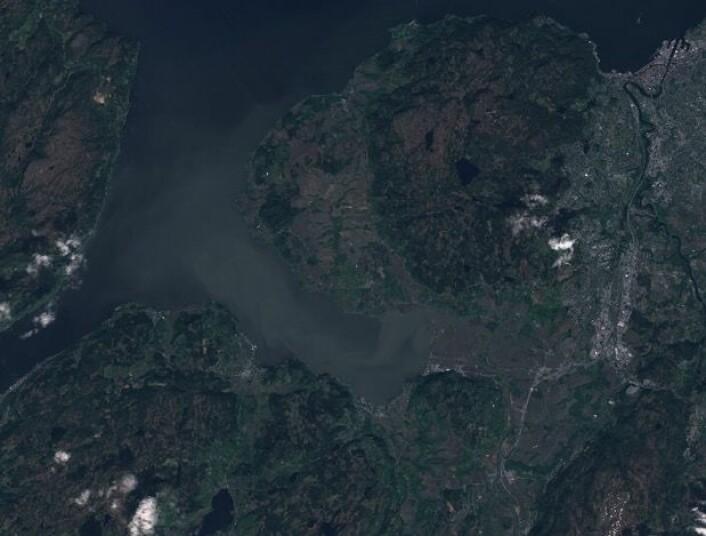 Vårflommen i Gaula setter sitt preg på vannet i Trondheimsfjorden. (Bilde: Copernicus Sentinel data 2017)