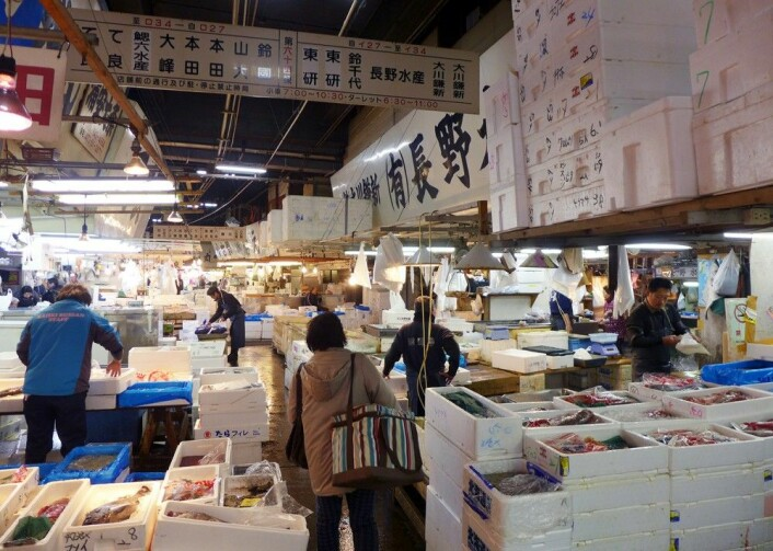 Tsukij-fiskemarkedet er en av Tokyos største attraksjoner. (Foto: Torstein Skåra)