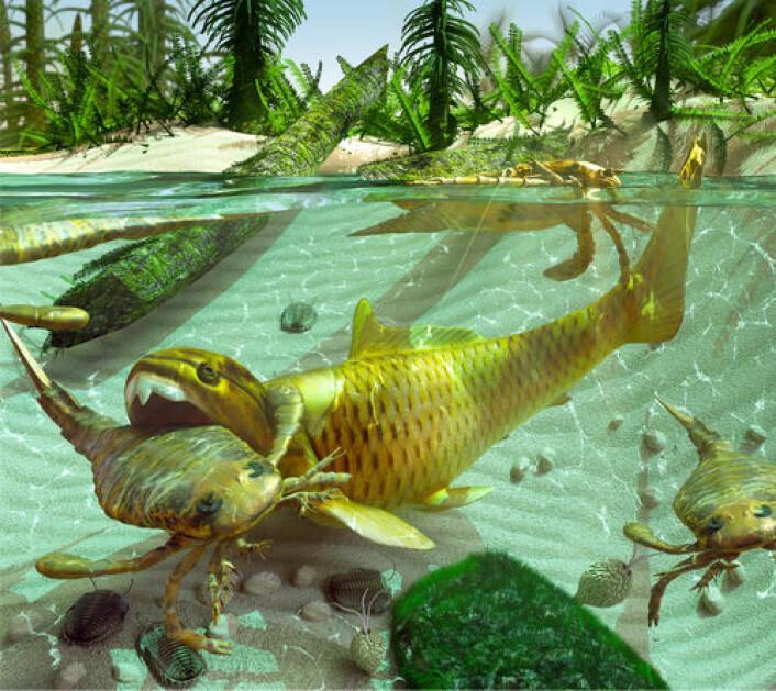 Kanskje så verden slik ut da de første insektene dukket opp? Ill.: Shutterstock
