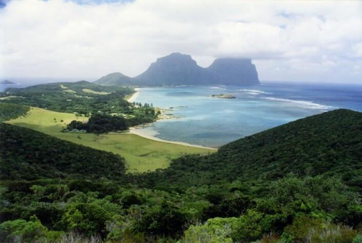 """Paradisøya Lord Howe Island, der det nå planlegges å dumpe 42 tonn gift fra helikopter for å fjerne rotteplagen en gang for alle. (Foto: David Morgan-Mar, <a href=""""https://commons.wikimedia.org/wiki/File:LordHoweIslandFromKimsLookout.jpg"""">Wikimedia Commons, se bilderettigheter her)</a>"""