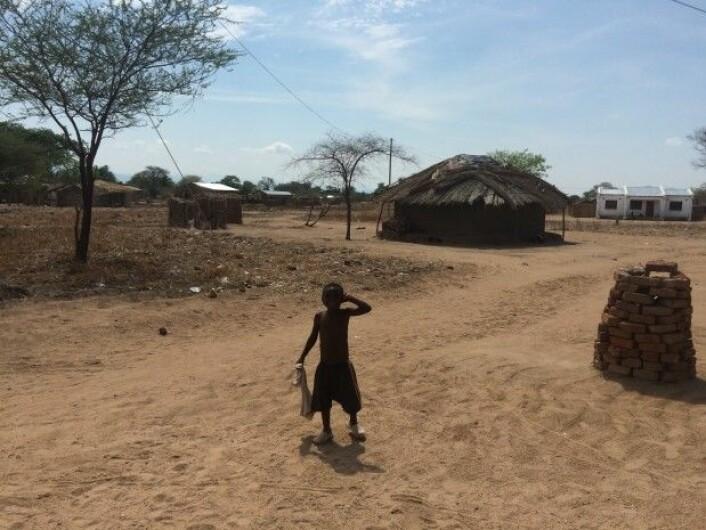 Hannekes boligfelt i Nthyala, hvor de fleste husstandene mangler strøm og innlagt vann.(Foto: Katerini T. Storeng)