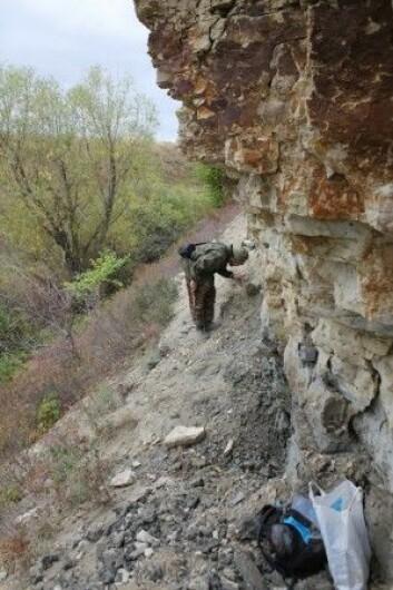 Mar'evka, grensa mellom jura og kritt. Paleontolog på tur. (Foto: LLD)