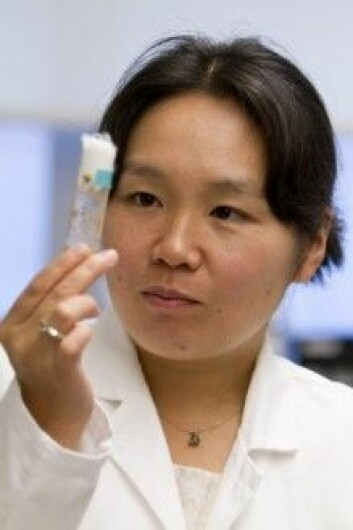 Yukiko Yamashita har ledet studien om nanotubene.Foto: John D. & Catherine T. MacArthur Foundation