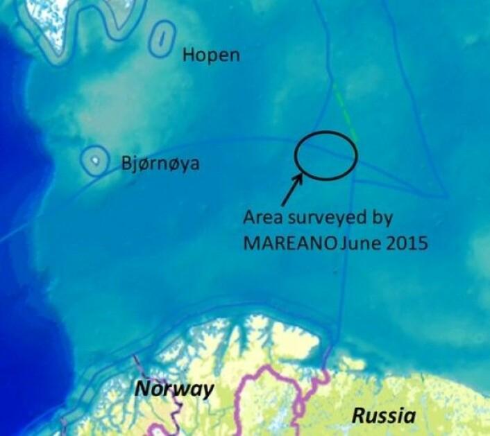 Vi kartlegger midt ute i Barentshavet i et område hvor planktonproduksjonen er svært høy. (Kart: MAREANO)