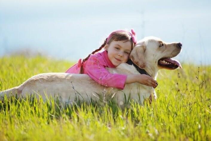 (Foto: Alena Ozerova / Shutterstock / NTB scanpix)