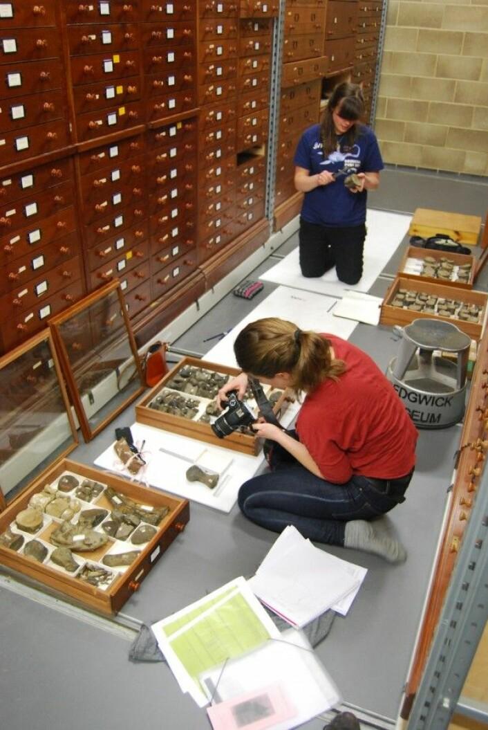 Lene og Aubrey storkoser seg i samlingene til Cambridge Sedgwick Museum. (Foto: Privat)